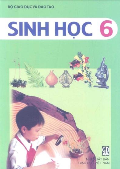 Tải sách: Sách Giáo Khoa Sinh Học Lớp 6