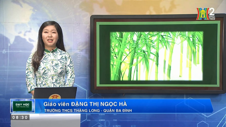 Tải sách: Bài 26 : Cây Tre Việt Nam – Tiếng Việt 6