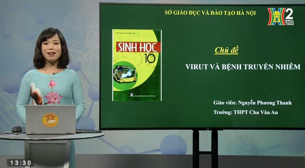 Tải sách: Bài 29, 30, 31, 32 : Virut Và Bệnh Truyền Nhiễm – Sinh Học 10